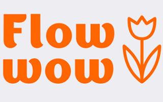 Flowwow — партнер Семейной Команды